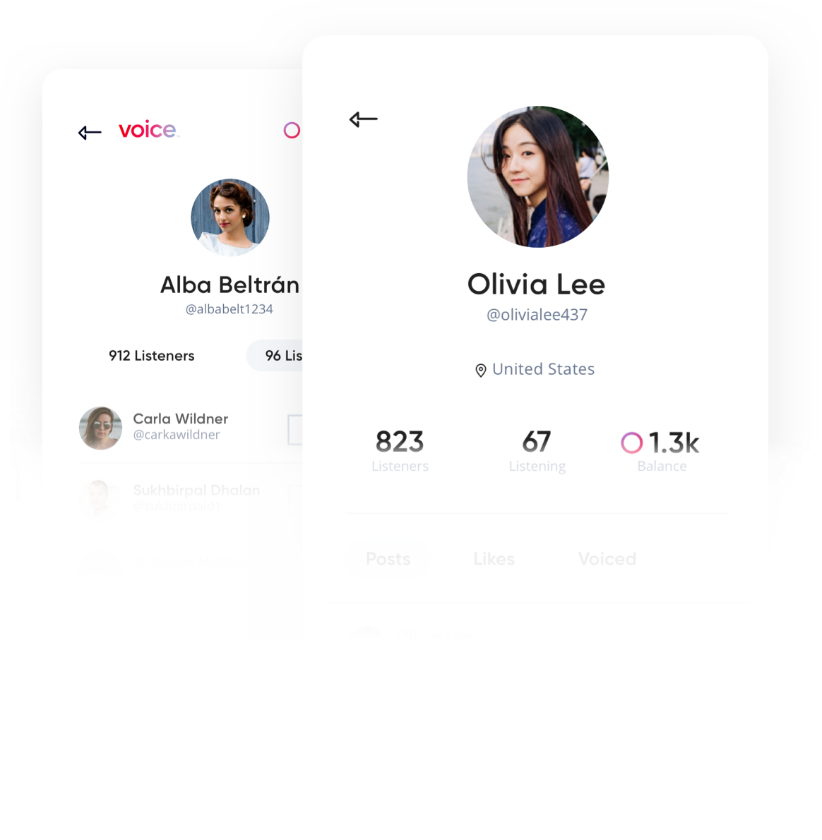 Get to Know Voice: Screenshot of User Profile