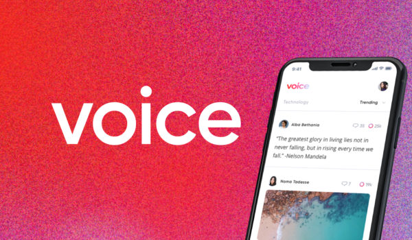 Voice logo + app on phone